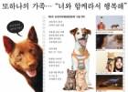 [비바100] 반려 동물과 즐기는 영화 축제, 제5회 '순천만세계동물영화제' 15일 개막