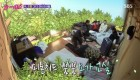 [TV풍향계]'불타는 청춘' 김국진 제치고 서열 1위 오른 강문영 활약에 활약 불구 시청률 하락