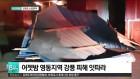 어젯밤 영동지역 강풍 피해 잇따라
