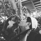 """'도시어부' 이경규, 코알라와 진지한 코인사…""""호주에서도 이어지는 동물사랑"""""""