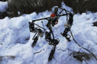 오슬로대학, 진화 알고리즘 이용한 4족 보행 로봇 개발