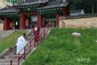 홍천향교 8월초하루 분향례 봉행
