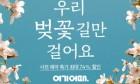 봄철 나들이 '전국 벚꽃 명소 기획전' 개최한 여기어때