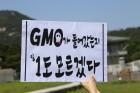 GMO완전표시제 국민청원 청와대 항의 소비자 행진