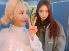 걸그룹 2월 개인 브랜드 1위 모모랜드 주이… 2위 레드벨벳 아이린·3위 트와이스 모모