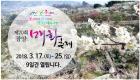 광양 매화축제 3월 17일 개막