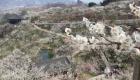광양매화축제 대한민국 봄꽃 축제의 서막 연다