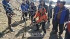 [신안] '모세혈관 강화·당뇨 예방·항암' 꾸지뽕 '대품' 현장교육