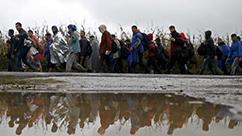 유럽 난민 사태